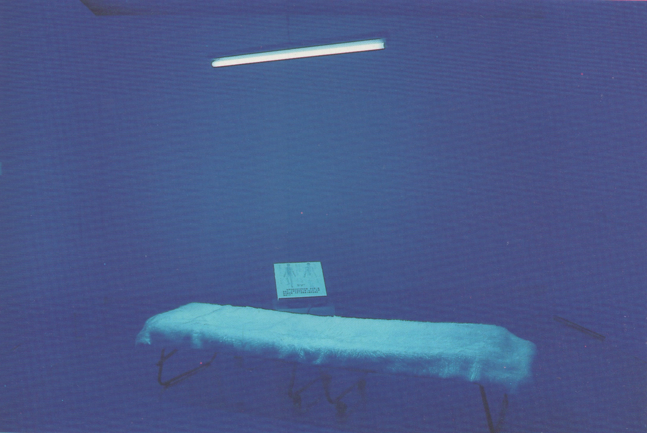 杜偉,《啟蒙的愛撫》,1994